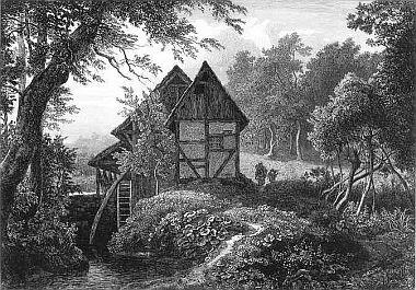 Die Mühle am Waldrand